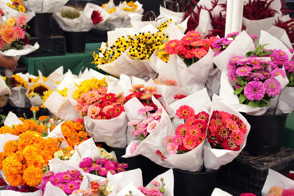 flores feira NY